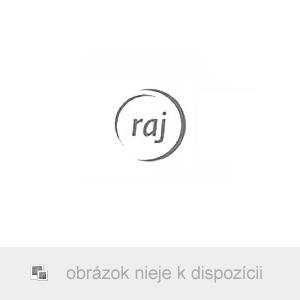 Traxxas Slash 1:10 RTR červený-X